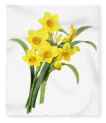 Narcissus (n. Tazetta) Fleece Blanket