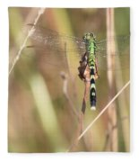 Natural Canvas With Dragonfly Fleece Blanket