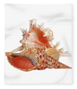 Natural Shell Collection On White Fleece Blanket