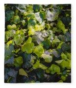 Nature Abstract 5 Fleece Blanket