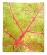Nature Abstract Sea Grape Leaf Fleece Blanket