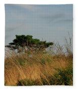 Nature Bonzai In The Evening Sun Fleece Blanket