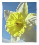Nature Daffodil Flowers Art Prints Spring Nature Art Fleece Blanket