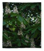 nature Ukraine blooming chestnuts Fleece Blanket