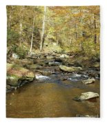 Nature's Finest 5 - Ricketts Glen Fleece Blanket