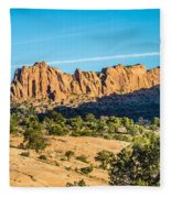 Navajo National Monument Canyons Fleece Blanket