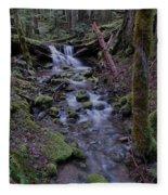 Near The End Of A Journey  Fleece Blanket