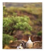 Maui Hawaii Haleakala National Park Nene Hawaiian State Bird Fleece Blanket