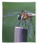 Neon Dragonfly Fleece Blanket