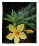 Nerium Oleander In The Rain Fleece Blanket