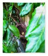 Nest In Plain Sight Fleece Blanket