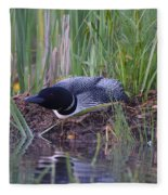 Nesting Loon Fleece Blanket