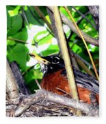 Nesting Robin Fleece Blanket