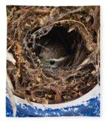 Nesting Wren Fleece Blanket