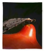 Neuroptera Posing Fleece Blanket