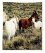 Nevada Wild Horses Fleece Blanket