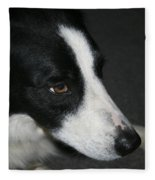 New Dog Friend Fleece Blanket