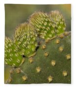 New Growth Fleece Blanket