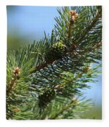 New Growth Pinecone At Chicago Botanical Gardens Fleece Blanket