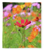 New Jersey Wildflowers Fleece Blanket