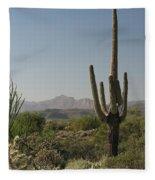 New Mexican Desert Fleece Blanket