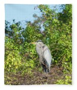 New Nest For Great Blue Heron Fleece Blanket