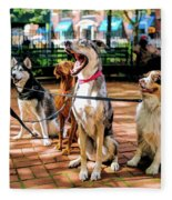 New York City Dog Walking Fleece Blanket