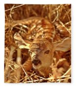 Newborn Fawn Fleece Blanket