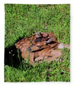 Newborn Red Deer Fleece Blanket