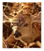 Newly Born Fawn Hiding In A Saskatchewan Field Fleece Blanket