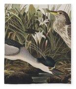 Night Heron Or Qua Bird Fleece Blanket