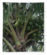 Niu Ola Hiki Coconut Palm Fleece Blanket