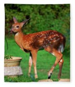 No I'm Not Bambi Fleece Blanket