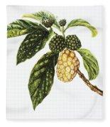 Noni Fruit Art Fleece Blanket