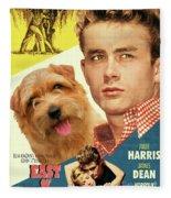 Norfolk Terrier Art Canvas Print - East Of Eden Movie Poster Fleece Blanket