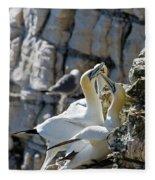 North Atlantic Gannets Fleece Blanket
