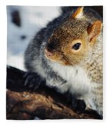 North Pond Squirrel Fleece Blanket