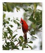 Northern Cardinal - In The Wind Fleece Blanket