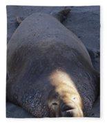 Northern Elephant Seal Fleece Blanket