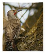Northern Flicker Woodpecker 1 Fleece Blanket