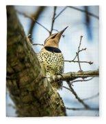Northern Flicker - Woodpecker Fleece Blanket