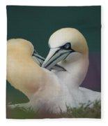 Northern Gannets Fleece Blanket