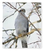 Northern Goshawk Fleece Blanket