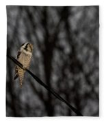 Northern Hawk-owl 22 Fleece Blanket
