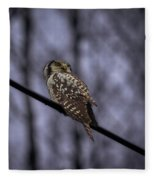 Northern Hawk-owl 6 Fleece Blanket