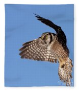 Northern Hawk Owl Fleece Blanket