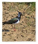 Northern Lapwing Fleece Blanket