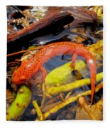 Northern Red Brook Fleece Blanket