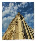 Notre Dame Angles In Color - Paris, France Fleece Blanket