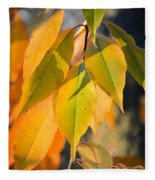 November Colors Fleece Blanket